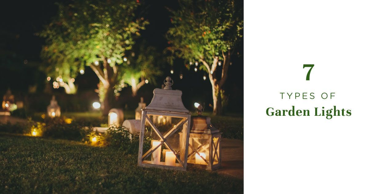 Garden lights blog cover