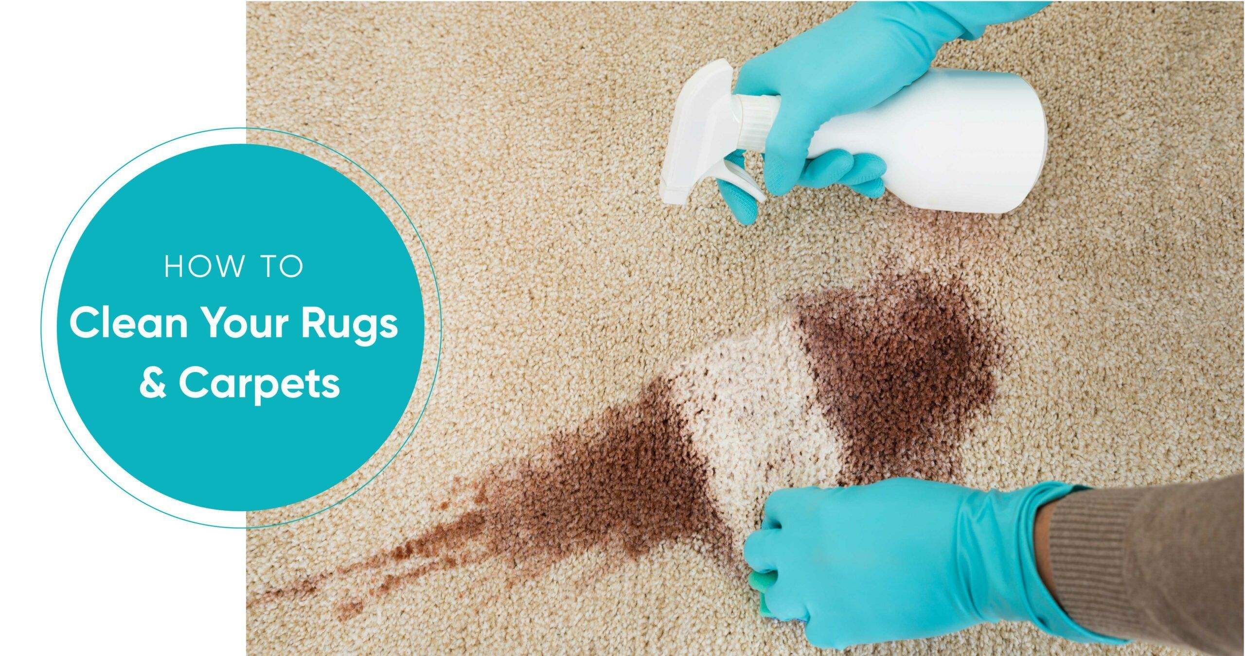 How to Clean Carpets and Rugs Without Professional Help