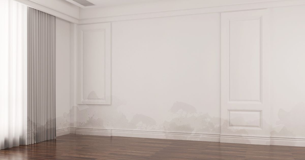Effective Ways To Prevent Damp Walls During The Monsoon