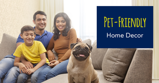 Pet proof your home