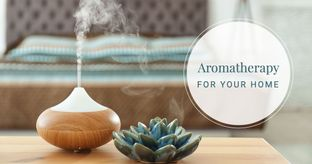 6 Essential Oils to Purify the Air & Help You Unwind