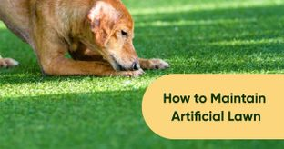 Want Your Artificial Lawn to Look as Good as Real?