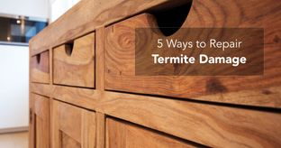 Termites-in-wooden-furniture_cover
