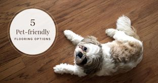 Which Flooring is Ideal for Pets?