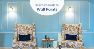 Everything You Need to Know About House Paints
