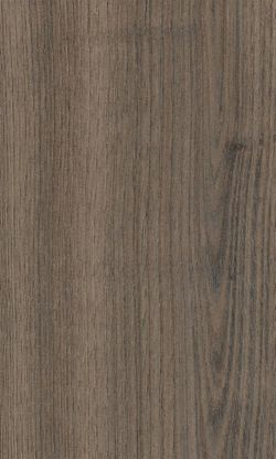 Smooth Leaved Elm, Suede