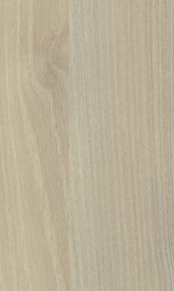 Acacia, Suede